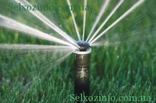 Дождевая система капельного полива
