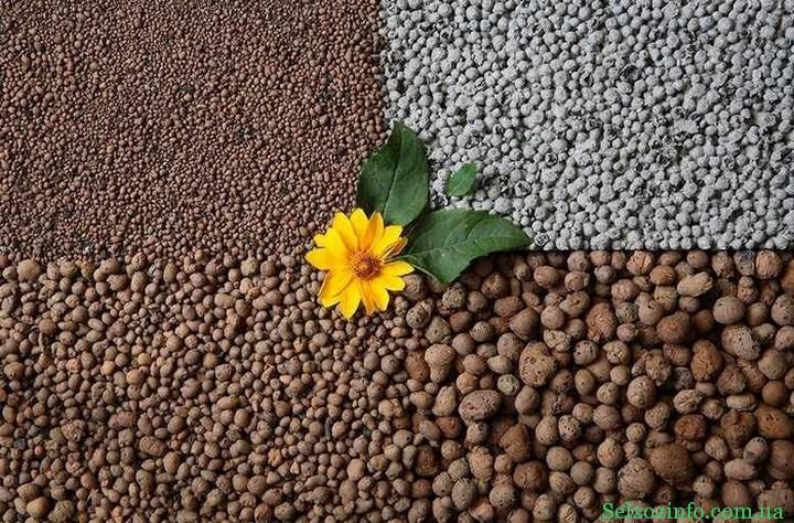 керамзит в садоводстве