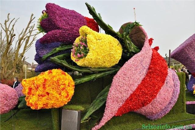 парад цветов в спб