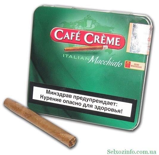 Эссе секрет где купить сигареты richmond сигареты где купить