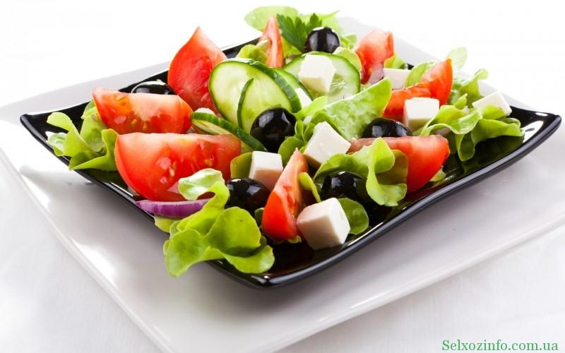 Бизнес идея цех по производству салатов