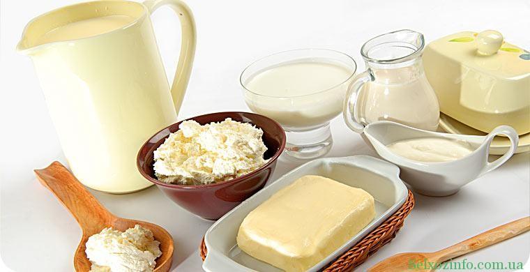 Как организовать бизнес на молоке