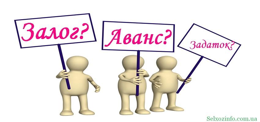 Первоначальный взнос за квартиру в Киеве, аванс или задаток