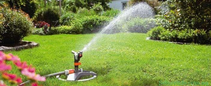 Дождеватель для полива участка