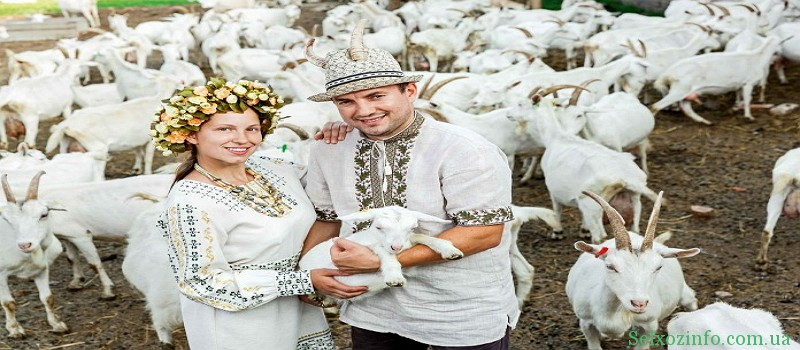 Розведення кіз як бізнес