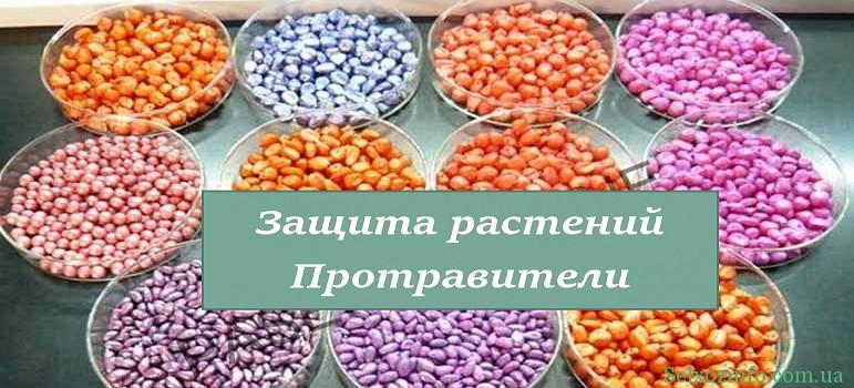 Влияние протравителей на семена