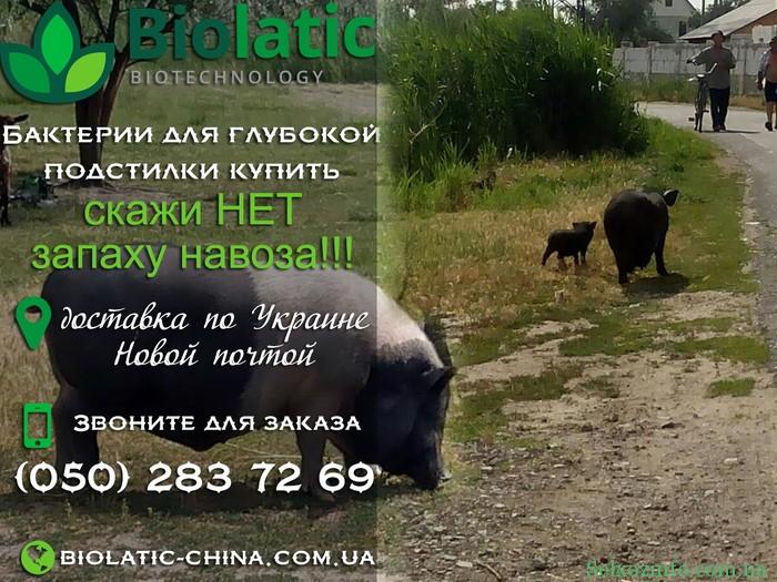 Телефоны биолатика в Украине