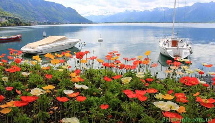 Отдых в Швейцарии: Женевское озеро
