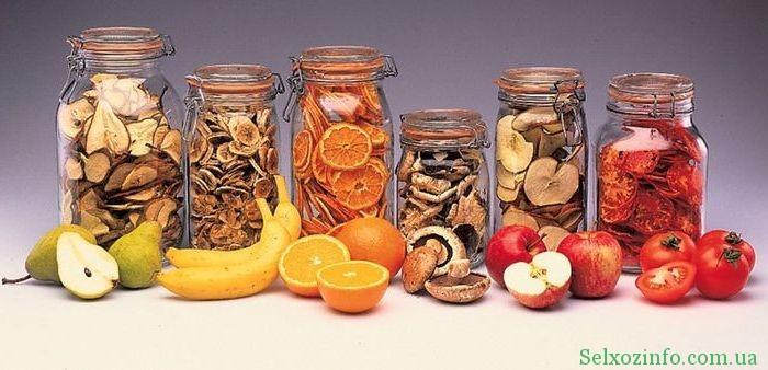 Как выбрать сушилку для овощей и фруктов