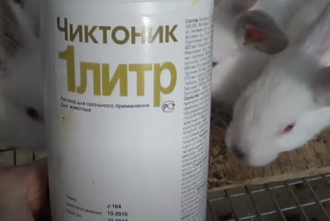 чиктоник для кроликов дозировка